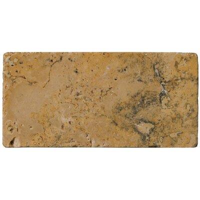 "Emser Tile Natural Stone 3"" x 6"" Travertine Subway Tile in Oro"
