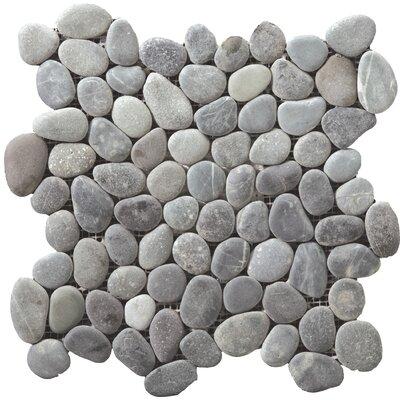 "Venetian Pebbles 12"" x 12"" Mosaic Tile in Silver"