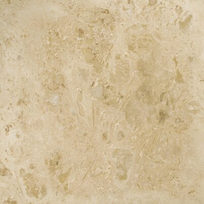 """Travertine 16"""" x 16"""" Filled and Honed Tile in Beige"""
