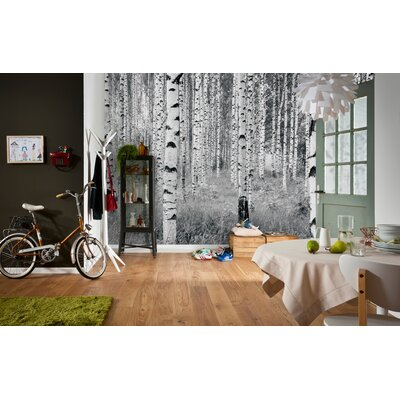 Komar birch forest wall mural for Brewster birch wall mural
