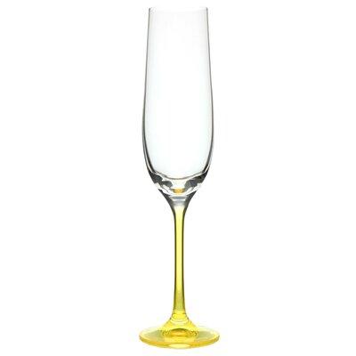 Ella Sabatini 4 Piece Neon 0.19L Champagne Flute Set