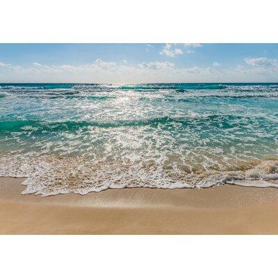 Komar Seaside 2.54m L x 368cm W Roll Wallpaper
