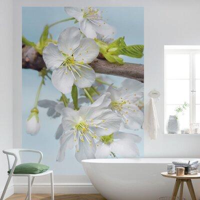 Komar 2 Piece Blossom Flower Wall Mural Set
