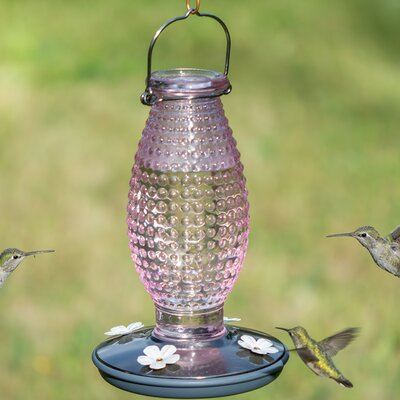 Hobnail Vintage Hummingbird Feeder Color: Pink