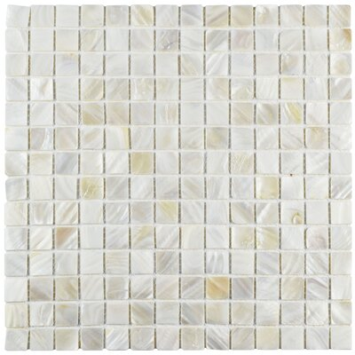 "Shore 0.75"" x 0.75 Seashell Mosaic Tile in White"