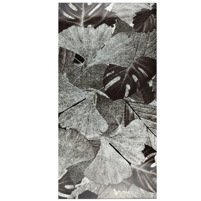 """Archaea 11.75"""" x 23.75"""" Glass Field Tile in Gingko Silver/Gray"""