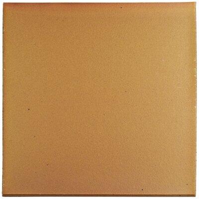 "Shale 12.75"" x 12.75"" Ceramic Field Tile in Brown"