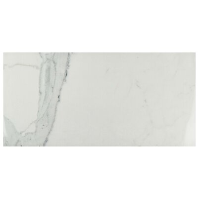 """Macedonia 14.63"""" x 29.5"""" Porcelain Field Tile in Marble White"""