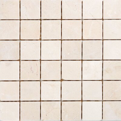 "2"" x 2"" Marble Mosaic Tile in Polished Crema marfil"