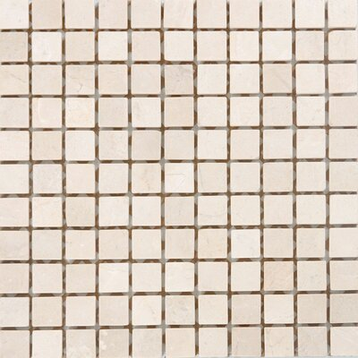 "1"" x 1"" Marble Mosaic Tile in Unpolished Crema marfil"