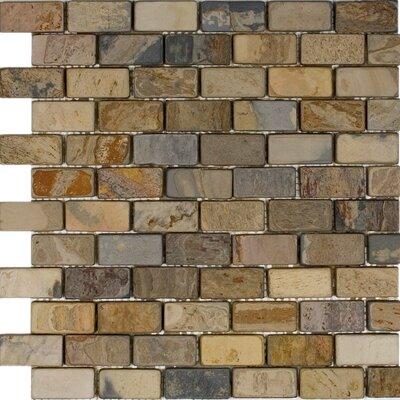 """1"""" x 2"""" Slate Mosaic Tile in Fall"""