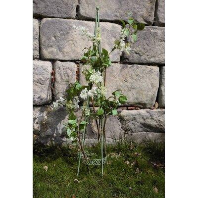 Fallen Fruits IH Plant Obelisk