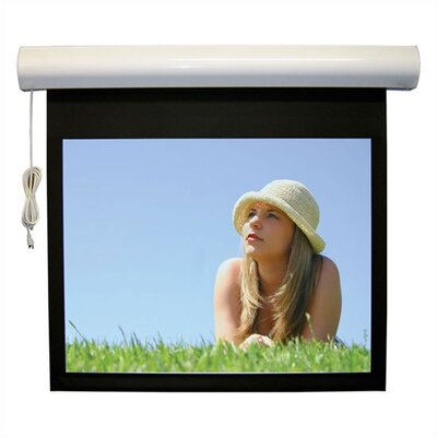 """Lectric I RF Matte Black Electric Projection Screen Low Voltage Motor Viewing Area: 153"""" diagonal"""