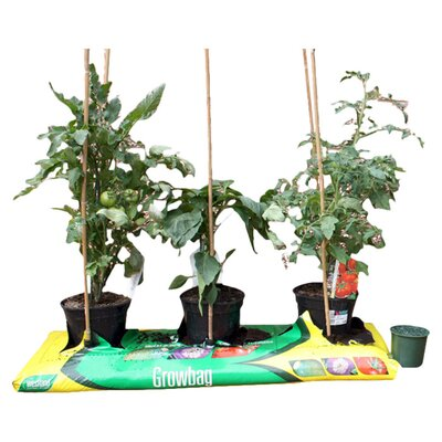 Greena Speed Feed For Growbags