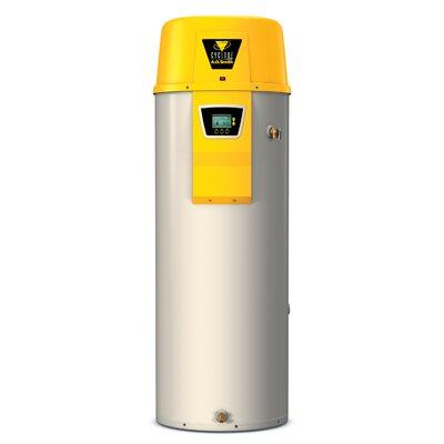 Commercial Tank Type Water Heater Nat Gas 50 Gal Cyclone Xi 100,000 BTU Input High Efficiency