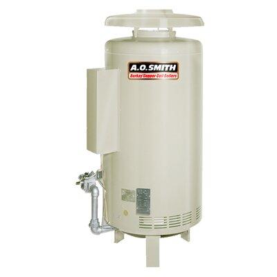 HW-300 Commercial Hot Water Supply Boiler Nat Gas Burkay 300,000 BTU Input