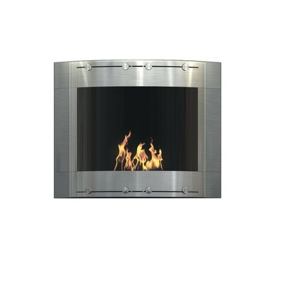 Arch Wall Mounted Bio-Ethanol Fireplace Finish: Stainless and Black