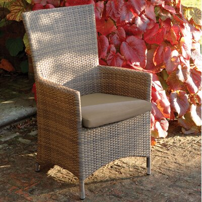 Life Ambrosia Dining Arm Chair with Cushion