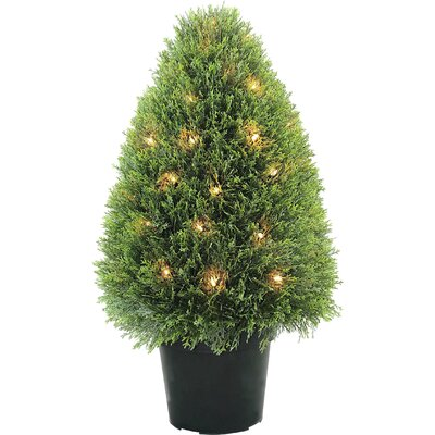 National Tree Co. Pre-Lit Upright Juniper Topiary in Pot ...  National Tree C...