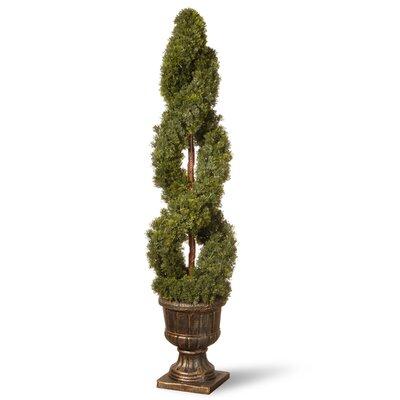 Double Cedar Spiral Topiary in Urn