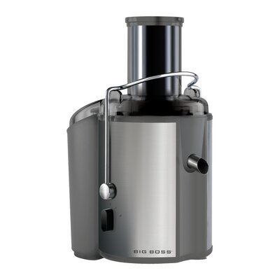 Stainless Steel 2-Speed Electric Juicer Color: Silver