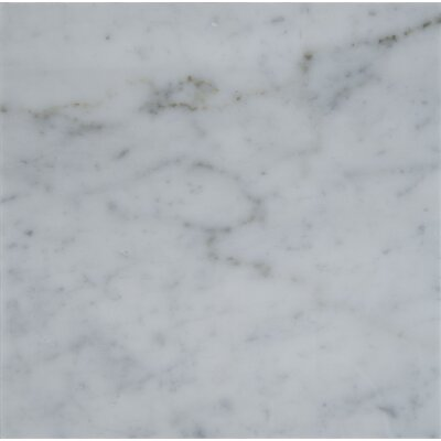 "Carrara 18"" x 18"" Natural Stone Field Tile in Gray"