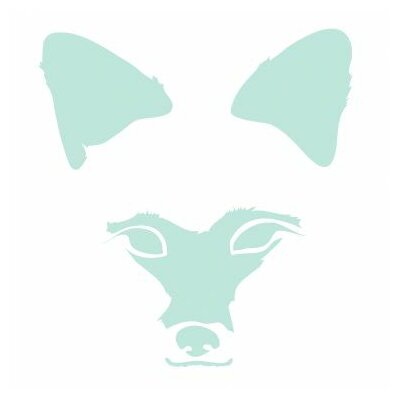 Animal Faces Fox Stretched Canvas Art