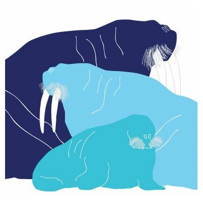 """Animals Walrus Stretched Canvas Art Size: 18"""" x 18"""", Color: Blue Hue"""