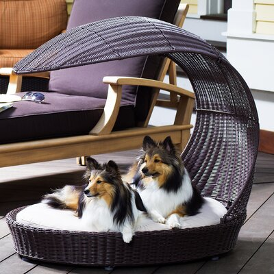 The Refined Canine Outdoor Dog Chaise Lounge