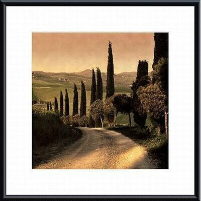 Printfinders 'Country Lane, Tuscany' by Elizabeth Carmel Framed Photographic Print