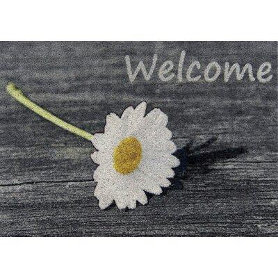 Akzente Clean Keeper Welcome Doormat