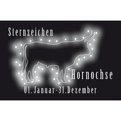 Akzente 'Hornochse' ('Nincompoop') Gallery Doormat