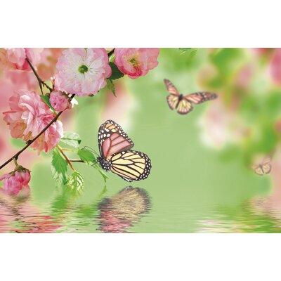 Akzente Butterflies Gallery Doormat