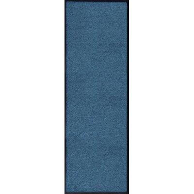 Akzente Plain Blue Indoor/Outdoor Area Rug