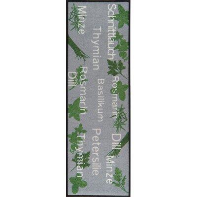 Akzente Herbs Gray/Green Indoor/Outdoor Area Rug