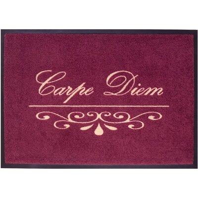 Akzente Easy Clean Carpe Diem Bordeaux Doormat
