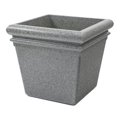 StoneTec Polymer Concrete Pot Planter Color: Ashtone