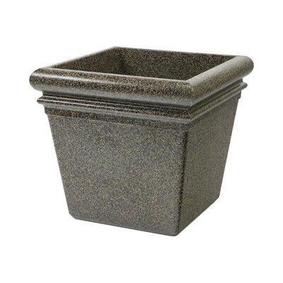 StoneTec Polymer Concrete Pot Planter Color: Aspen