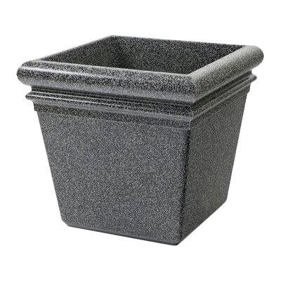 StoneTec Polymer Concrete Pot Planter Color: Pepperstone