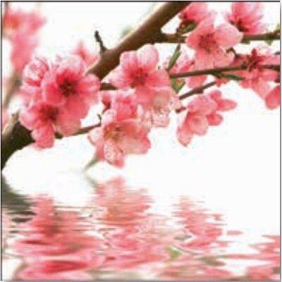 Artland Wandbild Pfirsichblüten reflektieren im Wasser von Yakusheva, Alena