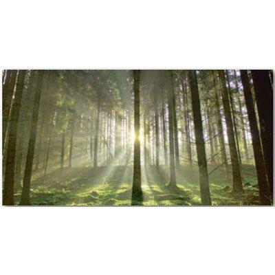 Artland Glasbild Fotodruck von Hubert Körner