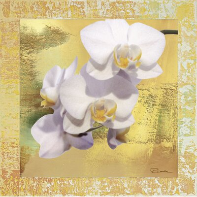 Artland Wandbild Weiße Orchidee II von Riweda - 62,4 x 62,4 cm