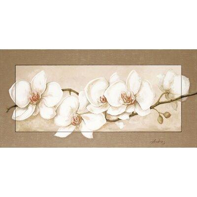 Artland Wandbild Orchideenzweig von Andres - 51,4 x 101,4 cm