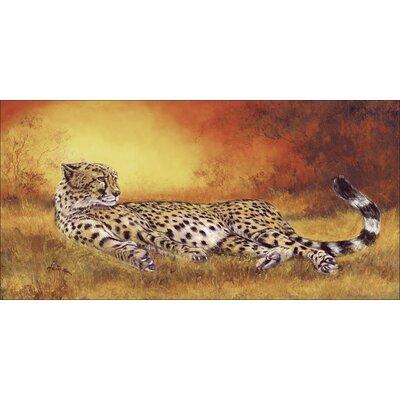 Artland Leinwandbild Liegender Gepard von Heins, A.
