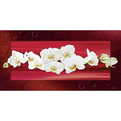 Artland Wandbild Orchideen von L., W. - 51,4 x 101,4 cm