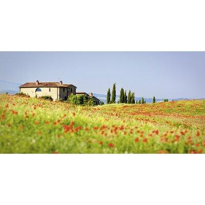 Artland Leinwandbild Toskanische rote Mohnblumen