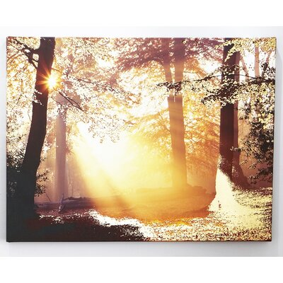 Graham & Brown Metallic Forest Photographic Print on Canvas