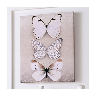 Graham & Brown Butterfly Trio Graphic Art on Canvas