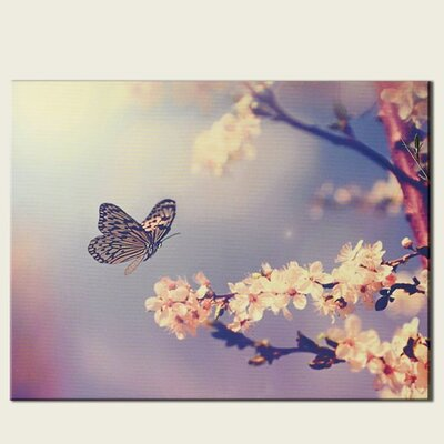 Graham & Brown Butterfly Branch Photographic Print on Canvas