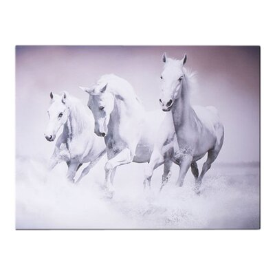Graham & Brown Galloping Waves Photographic Print on Canvas